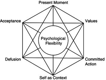 best act hexaflex diagram