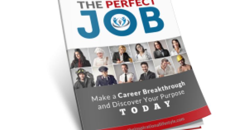 what is my ideal job  sneak preview on  u0026quot the perfect job